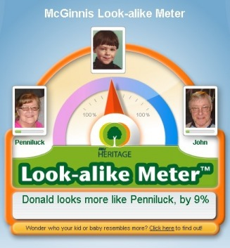 McGinnis Look-alike Meter - Mactree Web Site