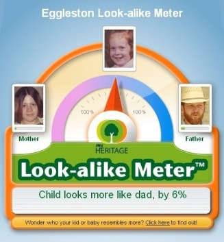Eggleston Look-alike Meter - Baca Web Site