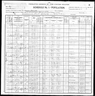 Snow1900Census - KurtEmrysTylerTree Web Site
