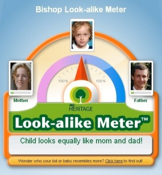 Bishop Look-alike Meter - Collingwwod Web Site
